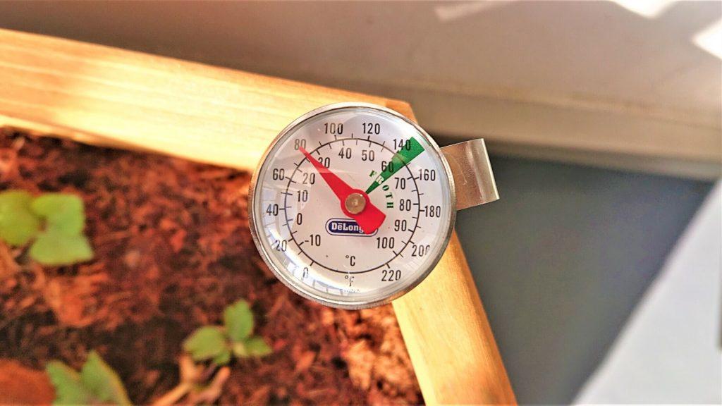 午後の温度