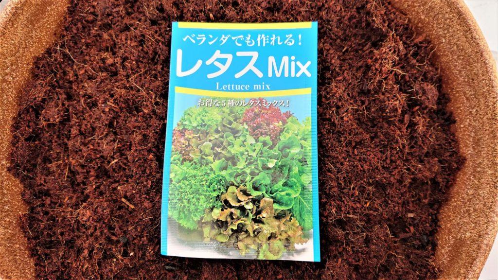 レタスミックスの種