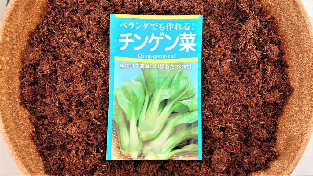 チンゲン菜の種 パッケージ