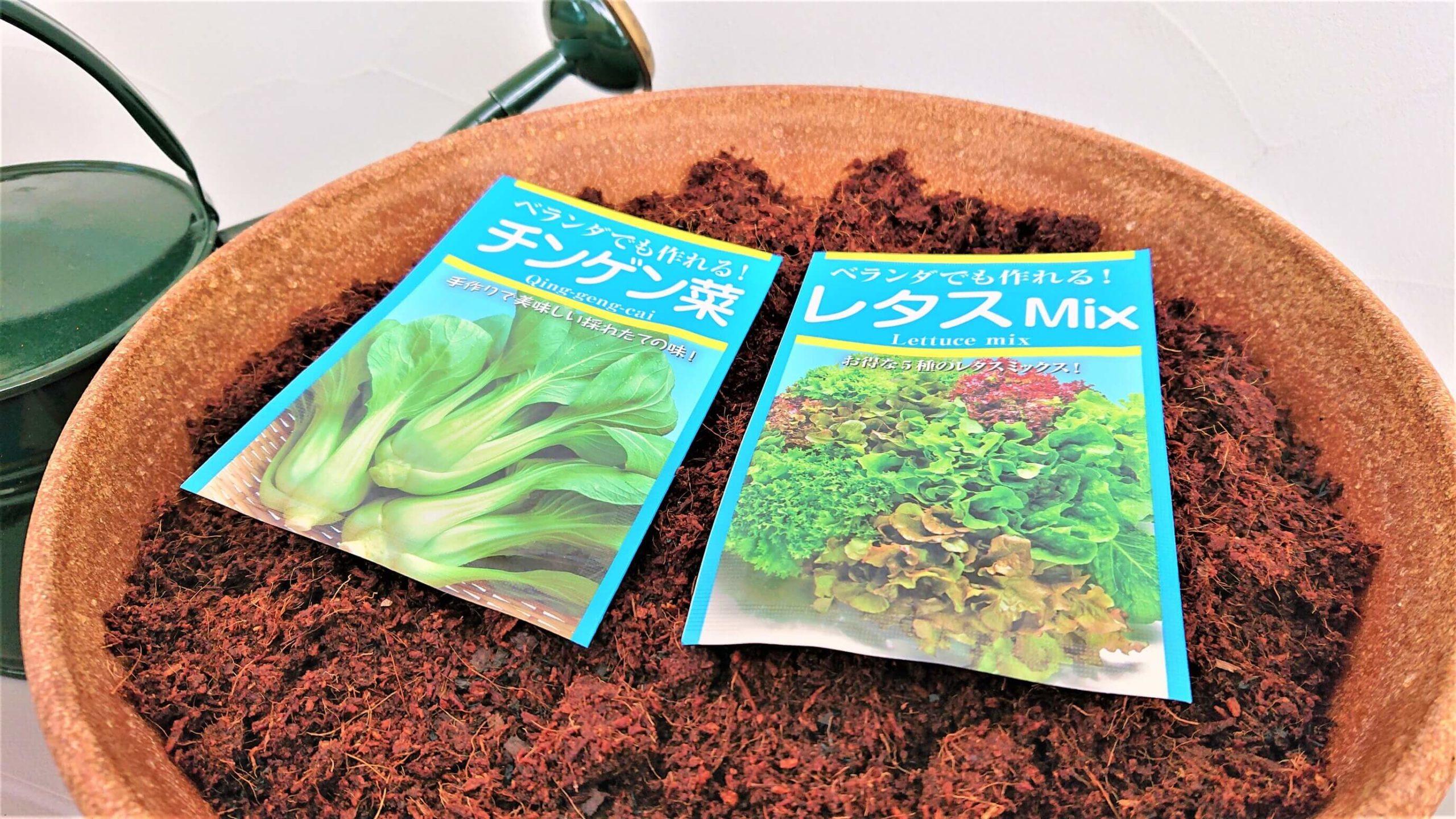 レタスミックス・チンゲン菜の種