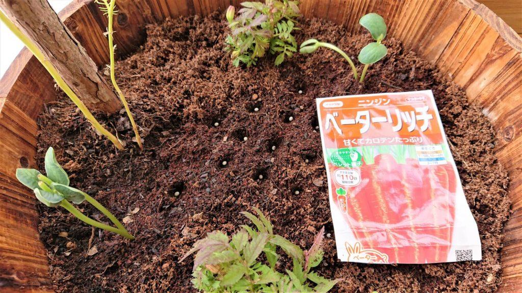 枝豆のコンパニオンプランツ
